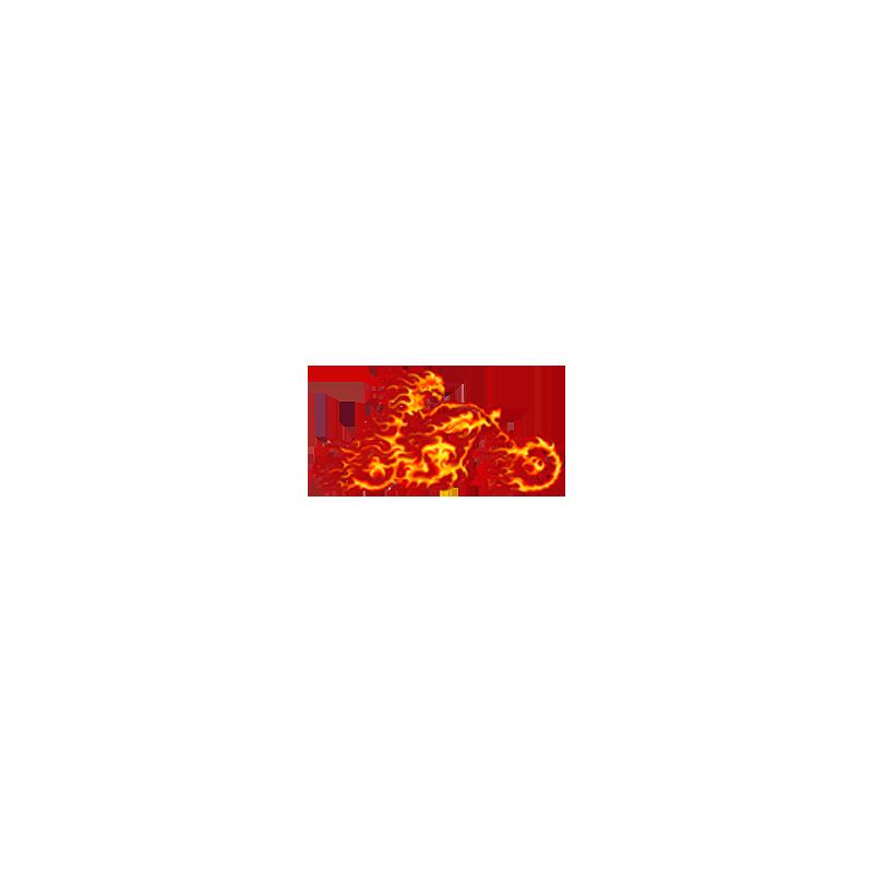 Bikers-Custom : Débardeur homme THE GHOST RIDER