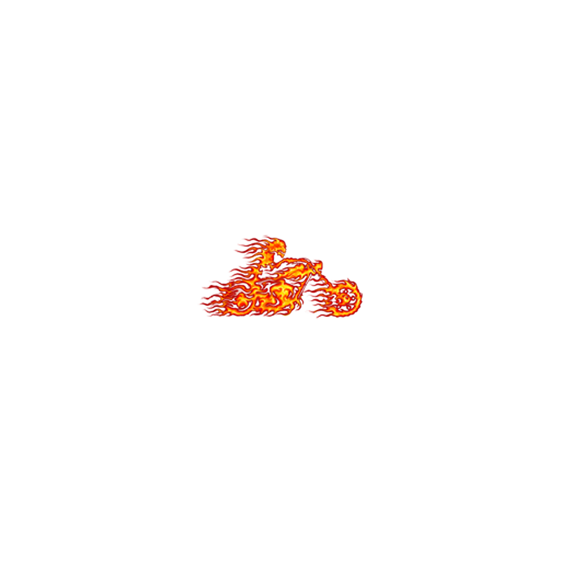 Bikers-Custom : Sweat zippé THE GHOST RIDER