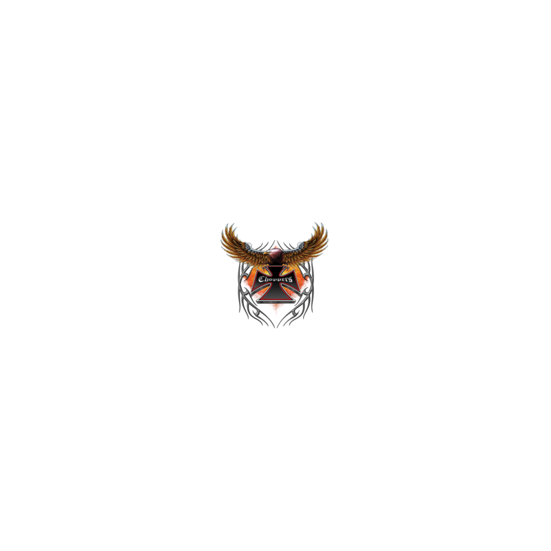 Bikers-Custom : T shirt eagle choppers