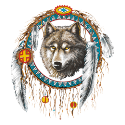 T Shirt enfant dreamcatcher wolf