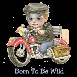 Body bébé BORN TO BE WILD